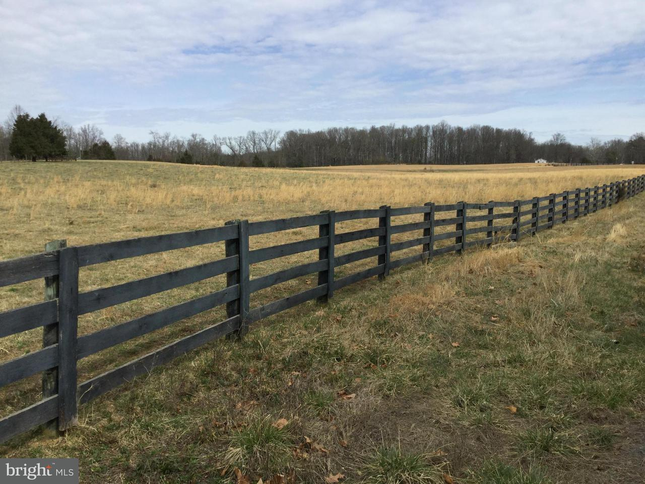 Land for Sale at 0 Ryland Chapel Rd Jeffersonton, Virginia 22724 United States