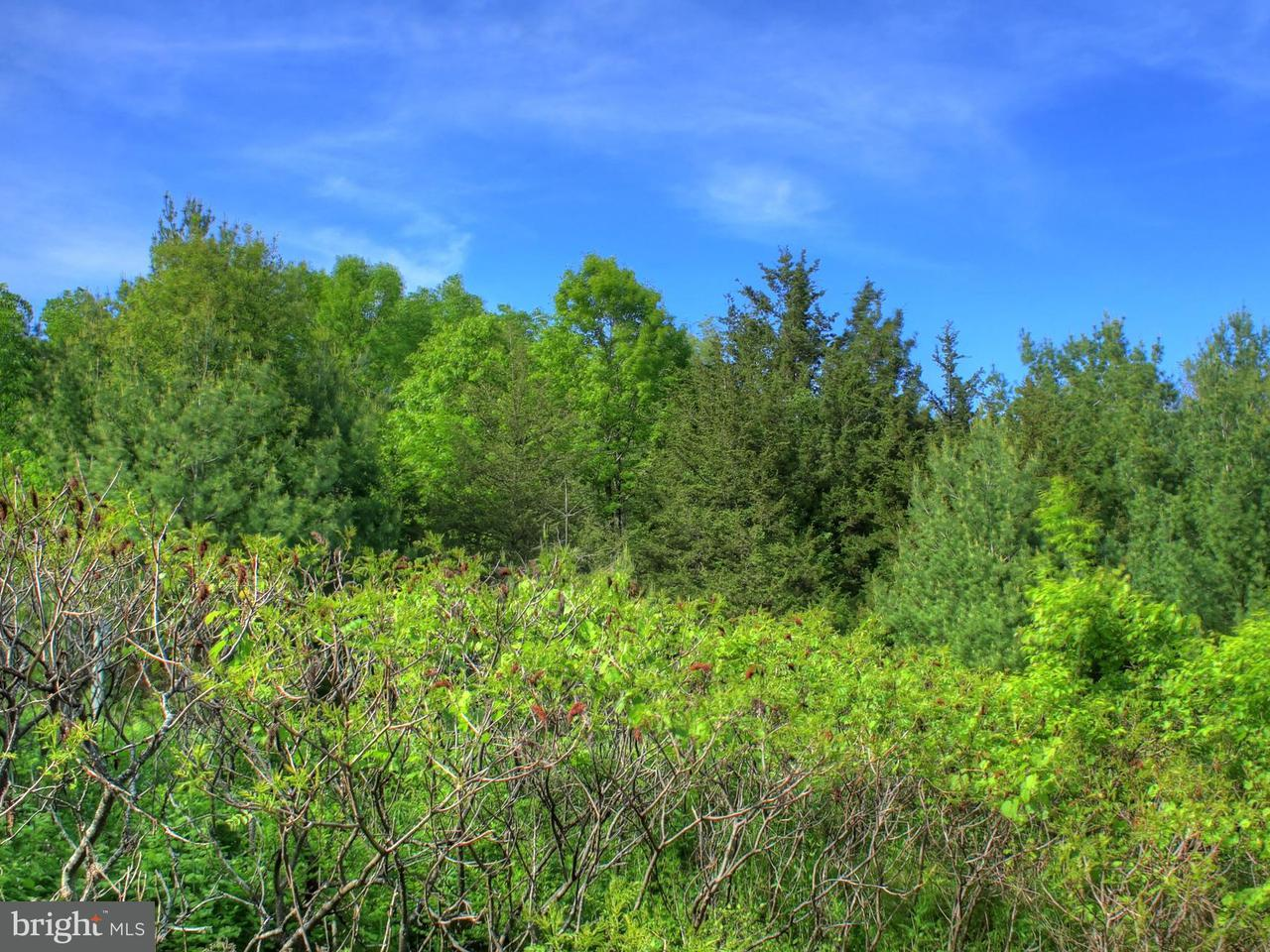 Land for Sale at Wilhoite Lane Rapidan, Virginia 22733 United States