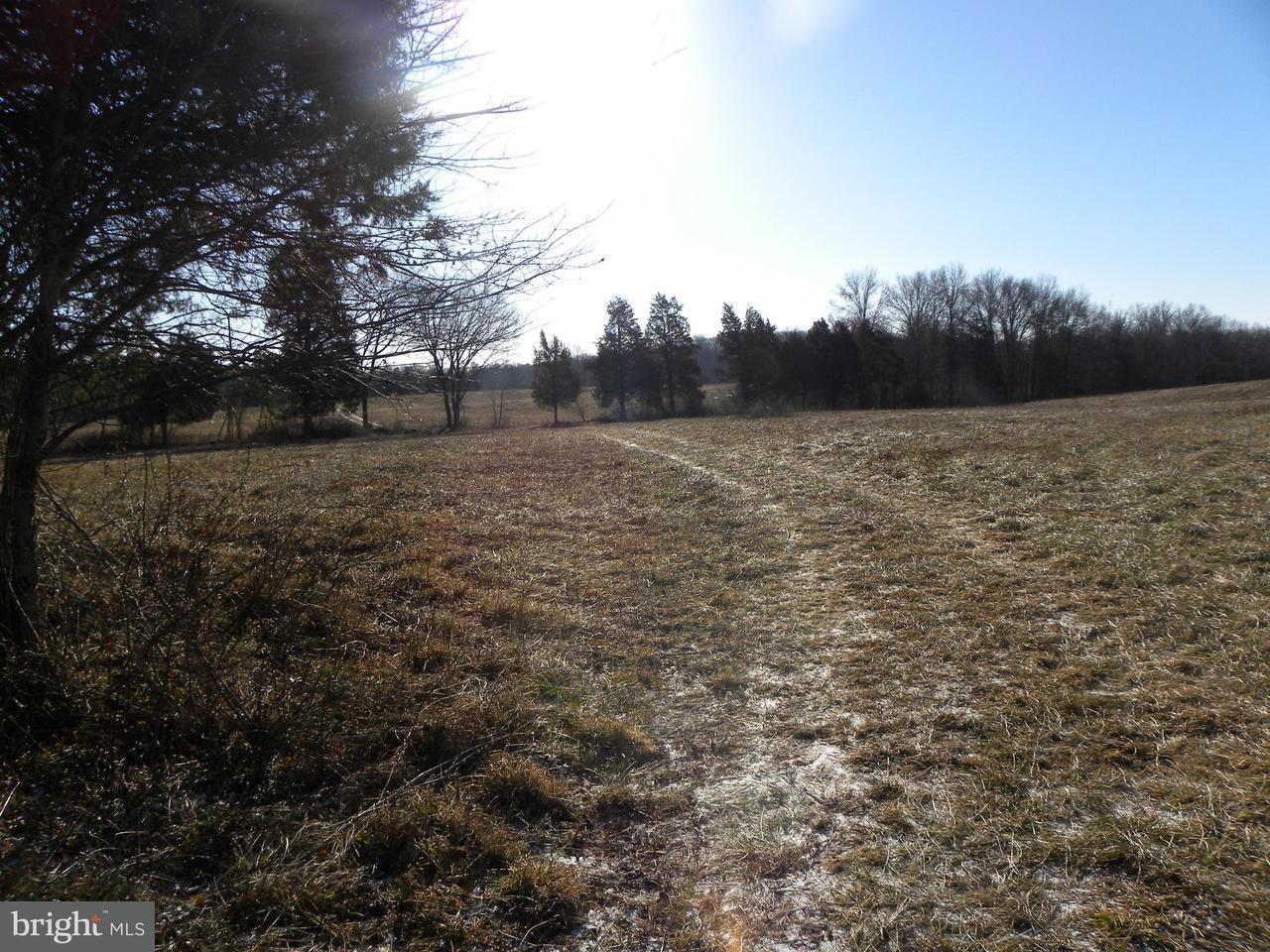 土地 のために 売買 アット 3865 Sanders Lane 3865 Sanders Lane Catharpin, バージニア 20143 アメリカ合衆国