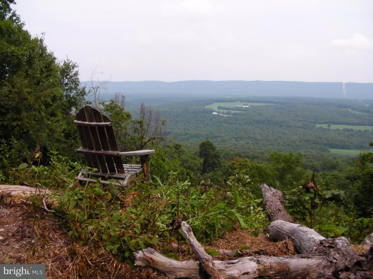 Land for Sale at 0 Taylor Road Shade Gap, Pennsylvania 17255 United States