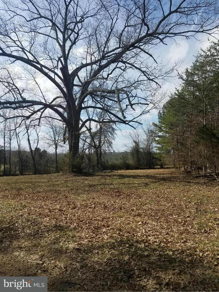 Land for Sale at Blue Run Rd Somerset, Virginia 22972 United States
