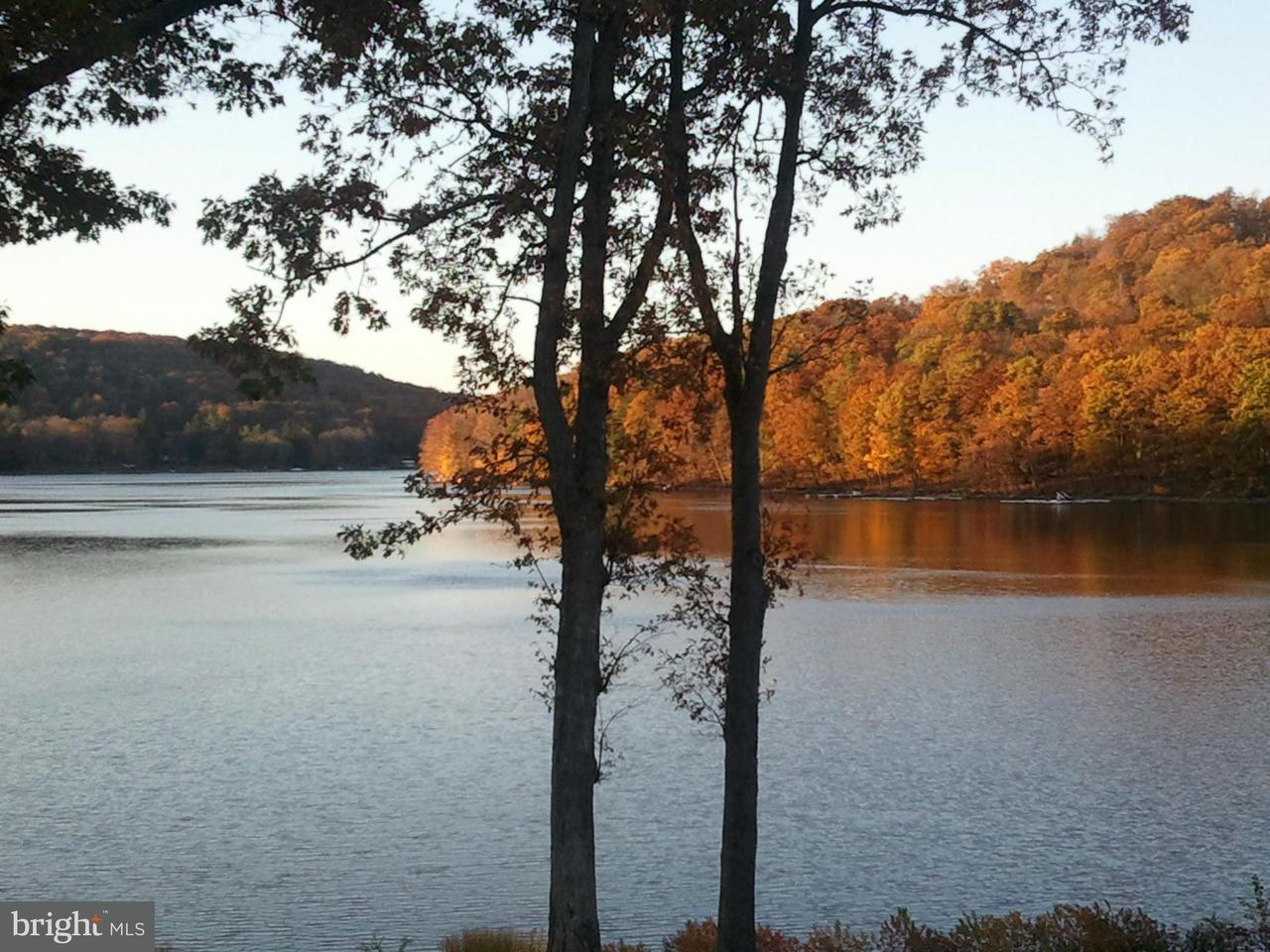Additional photo for property listing at 113lot Woodbine Dr  Terra Alta, West Virginia 26764 United States