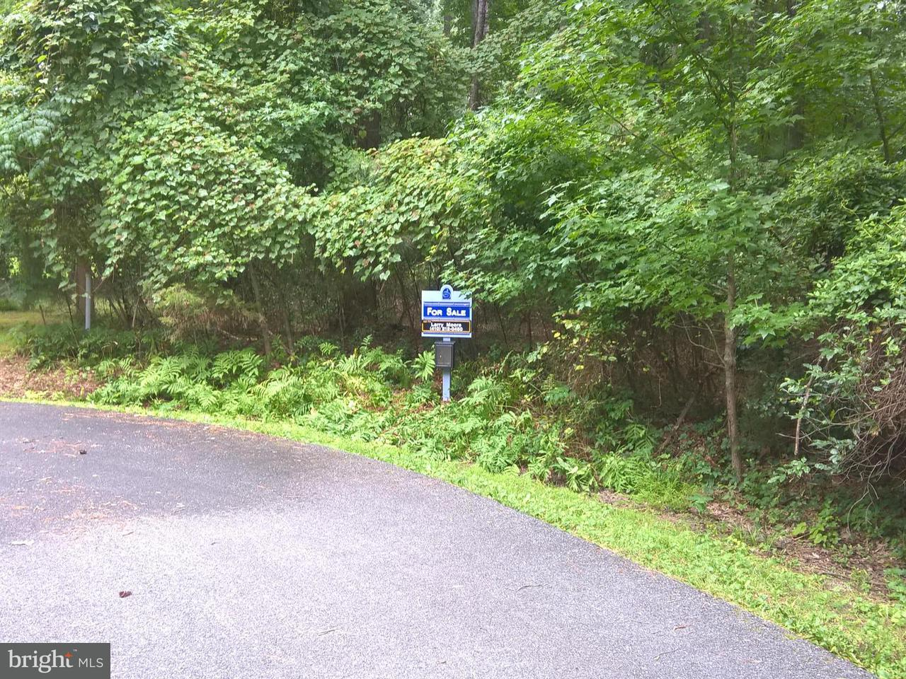 Land for Sale at 14735 Locust Ct Issue, Maryland 20645 United States