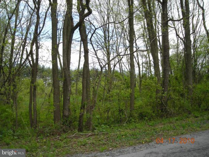 Land for Sale at 7521 University Rd Boonsboro, Maryland 21713 United States