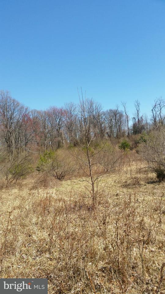 Land for Sale at 9373 Elihu Marshall, Virginia 20115 United States