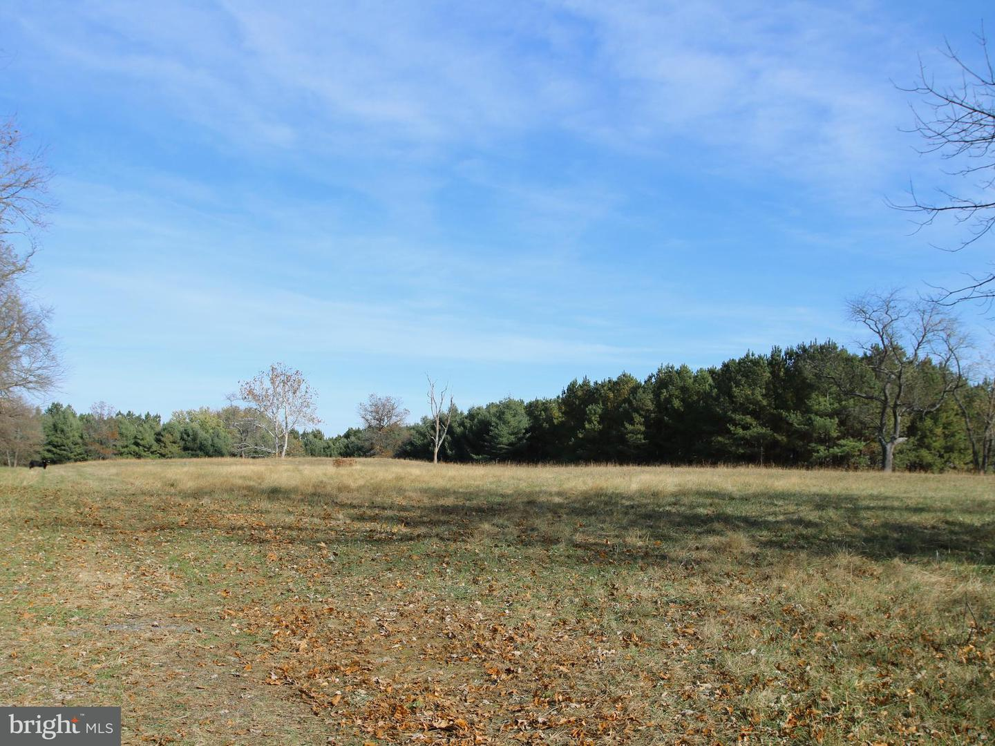 Land for Sale at 9008 John Mosby Highway Upperville, Virginia 20184 United States