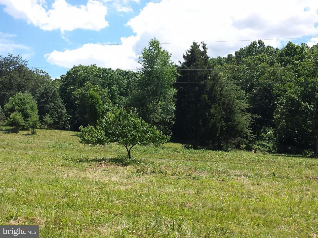 Land for Sale at West Brook Road Lot C Old Fields, West Virginia 26845 United States