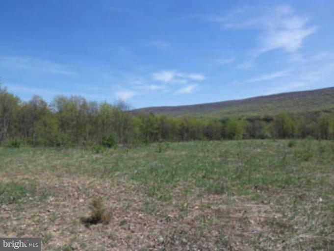 Land for Sale at Bamboo Ln Berkeley Springs, West Virginia 25411 United States