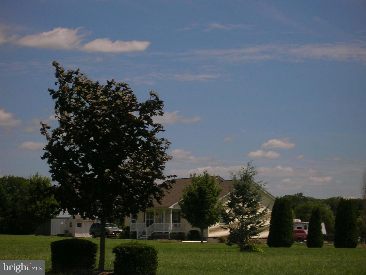Additional photo for property listing at Wrights Wharf Rd  Hurlock, Maryland 21643 United States