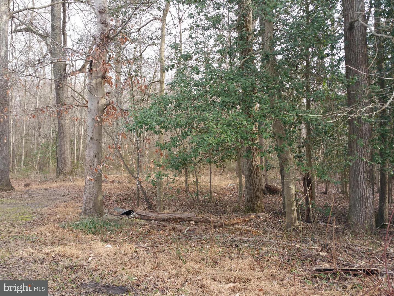 Photo of home for sale at Delphinium Trail, Lorton VA