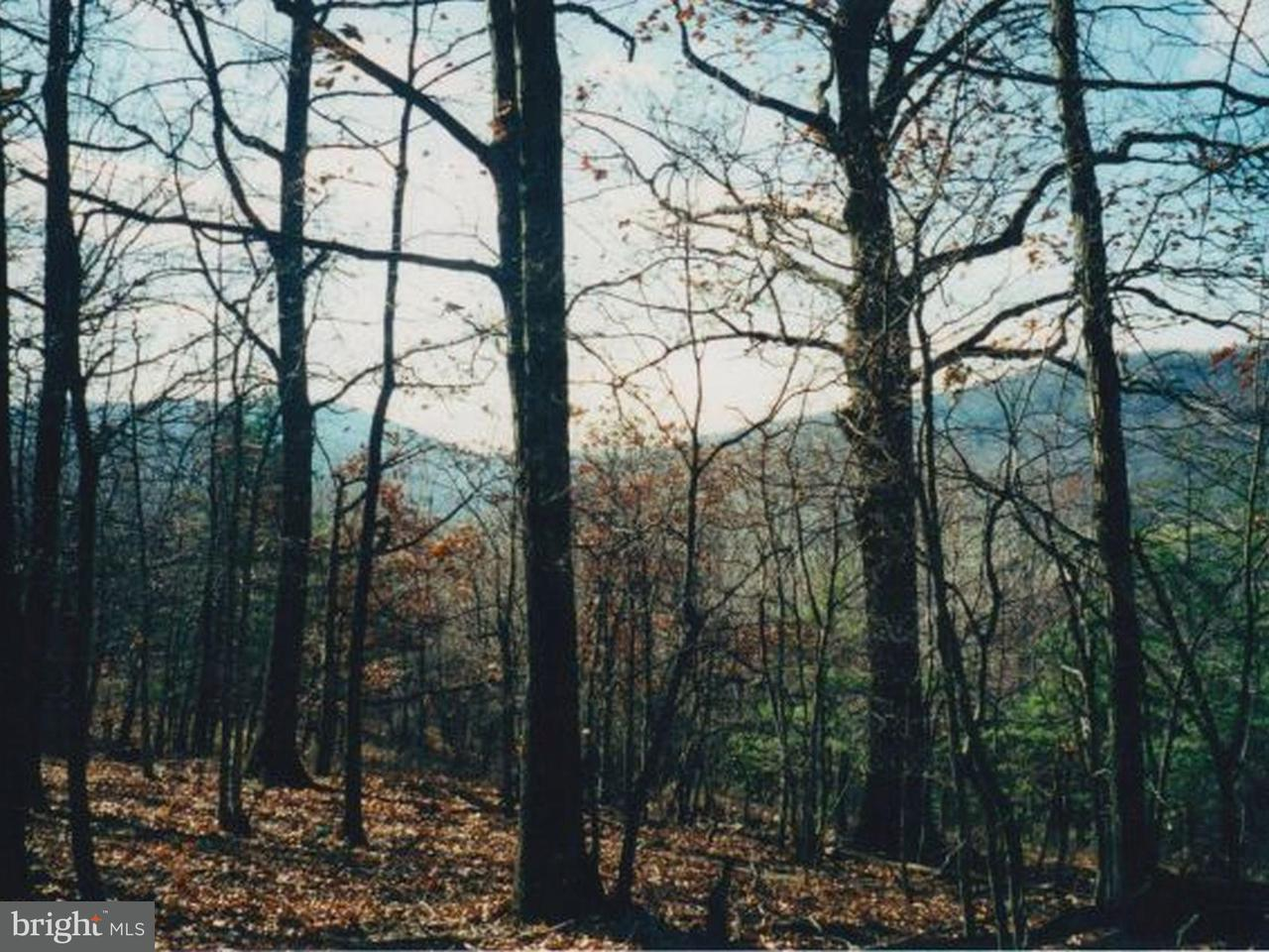 Land for Sale at South Of Route 59 Lost City, West Virginia 26810 United States