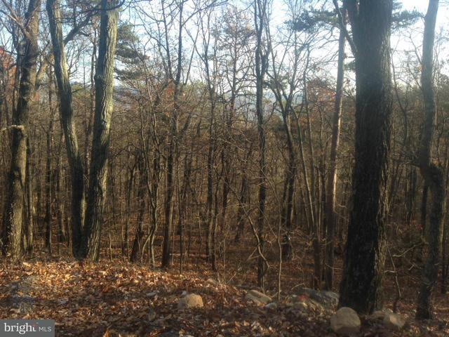 Additional photo for property listing at Panorama View Dr.  Stanley, Virginia 22851 United States