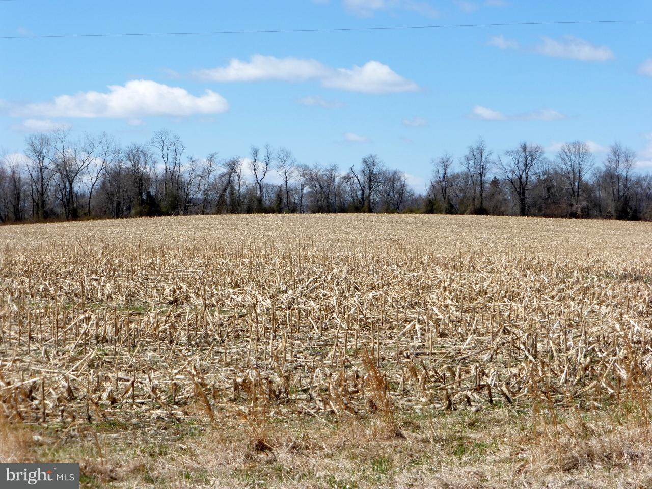 Land for Sale at Not On File Lovettsville, Virginia 20180 United States