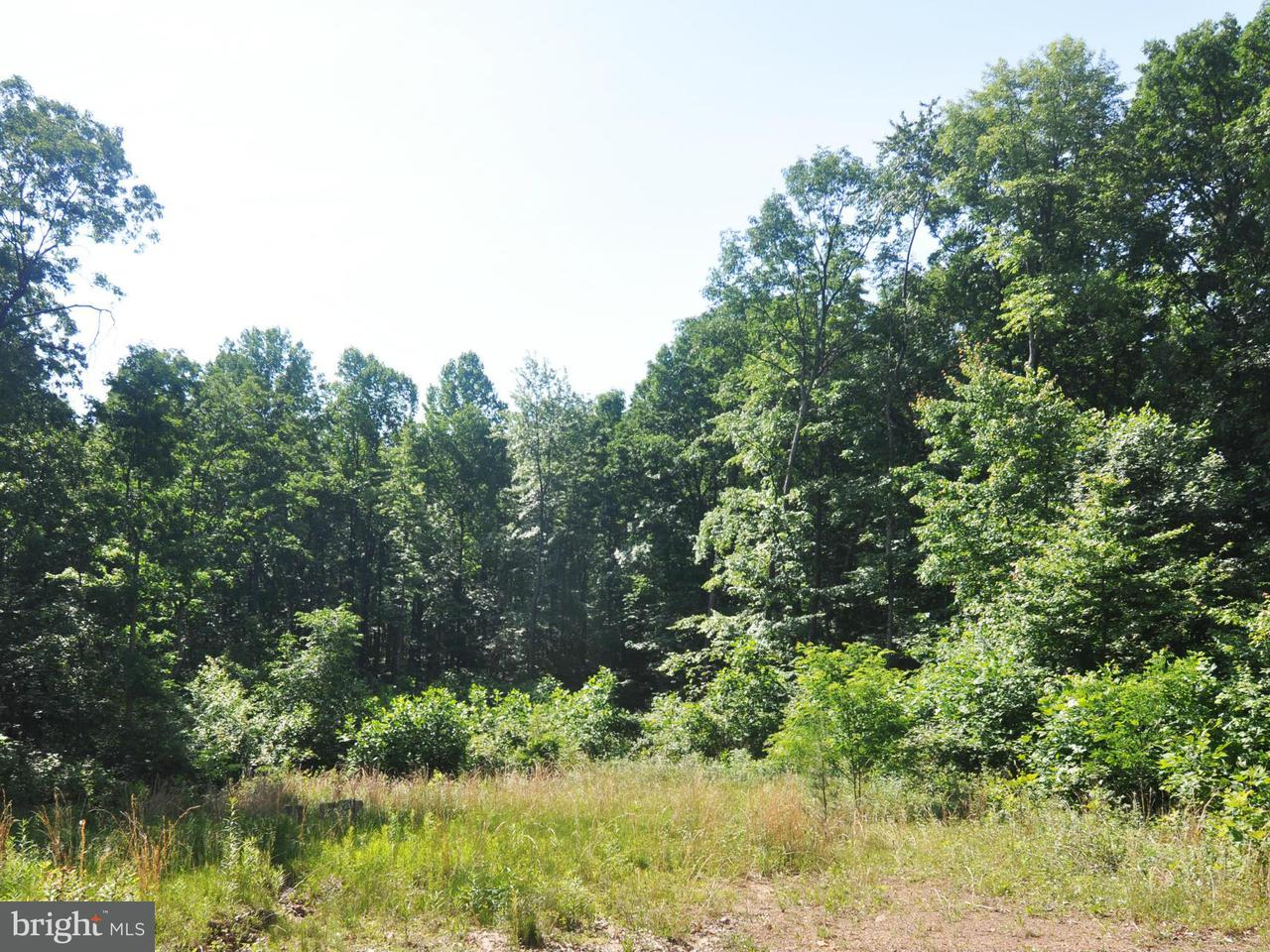 Land for Sale at Lot 9 Falconwood Dr Bloomery, West Virginia 26817 United States