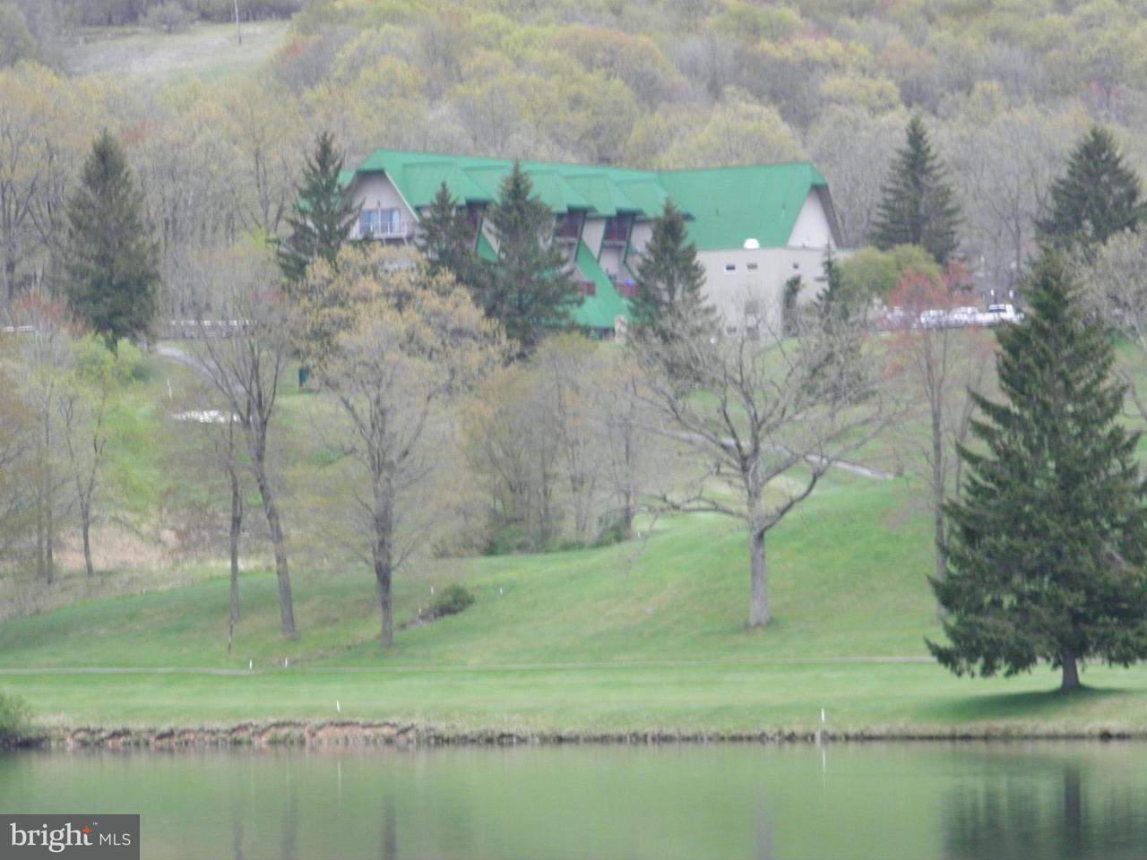 Additional photo for property listing at 108 Bluebird Dr  Terra Alta, West Virginia 26764 United States