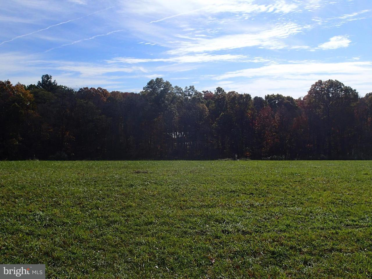 Land for Sale at Piney Ridg Not On File Huntingdon, Pennsylvania 16652 United States