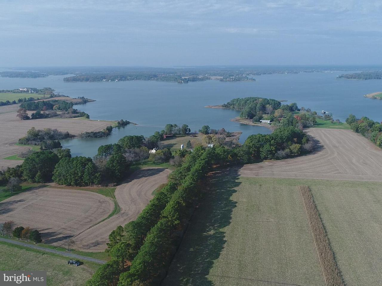 Farm for Sale at 5252 Long Point Farm Dr Oxford, Maryland 21654 United States