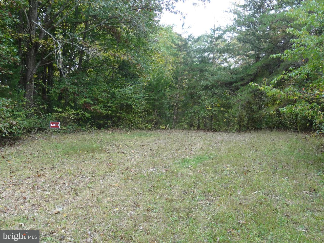 Additional photo for property listing at Little River Estates  Bumpass, Virginia 23024 United States