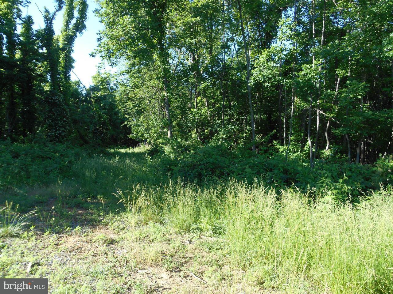 Land for Sale at Lot 63 Savannah Dr Strasburg, Virginia 22657 United States