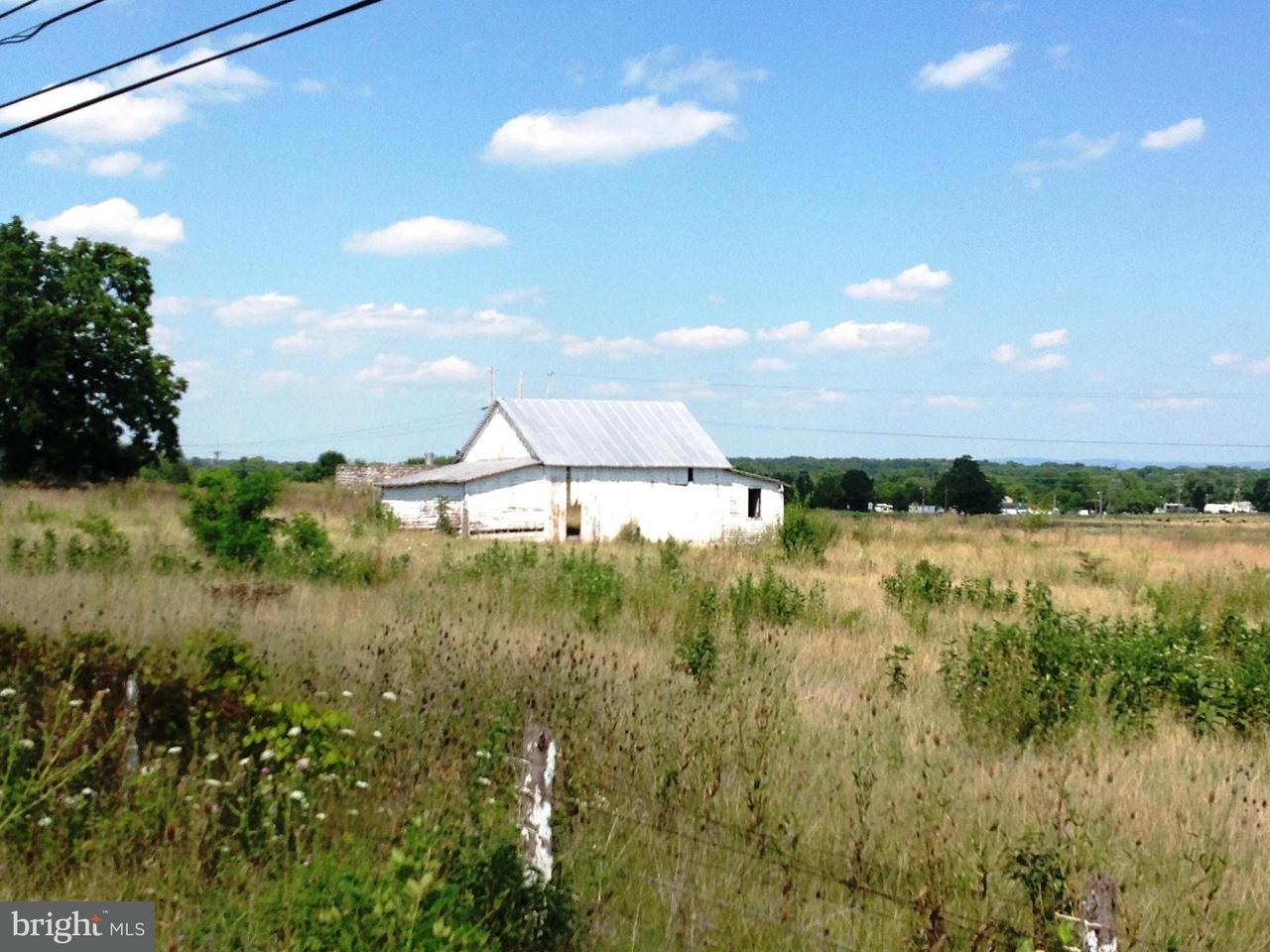 Additional photo for property listing at Front Royal Pike/Rt. 340  White Post, Virginia 22663 United States