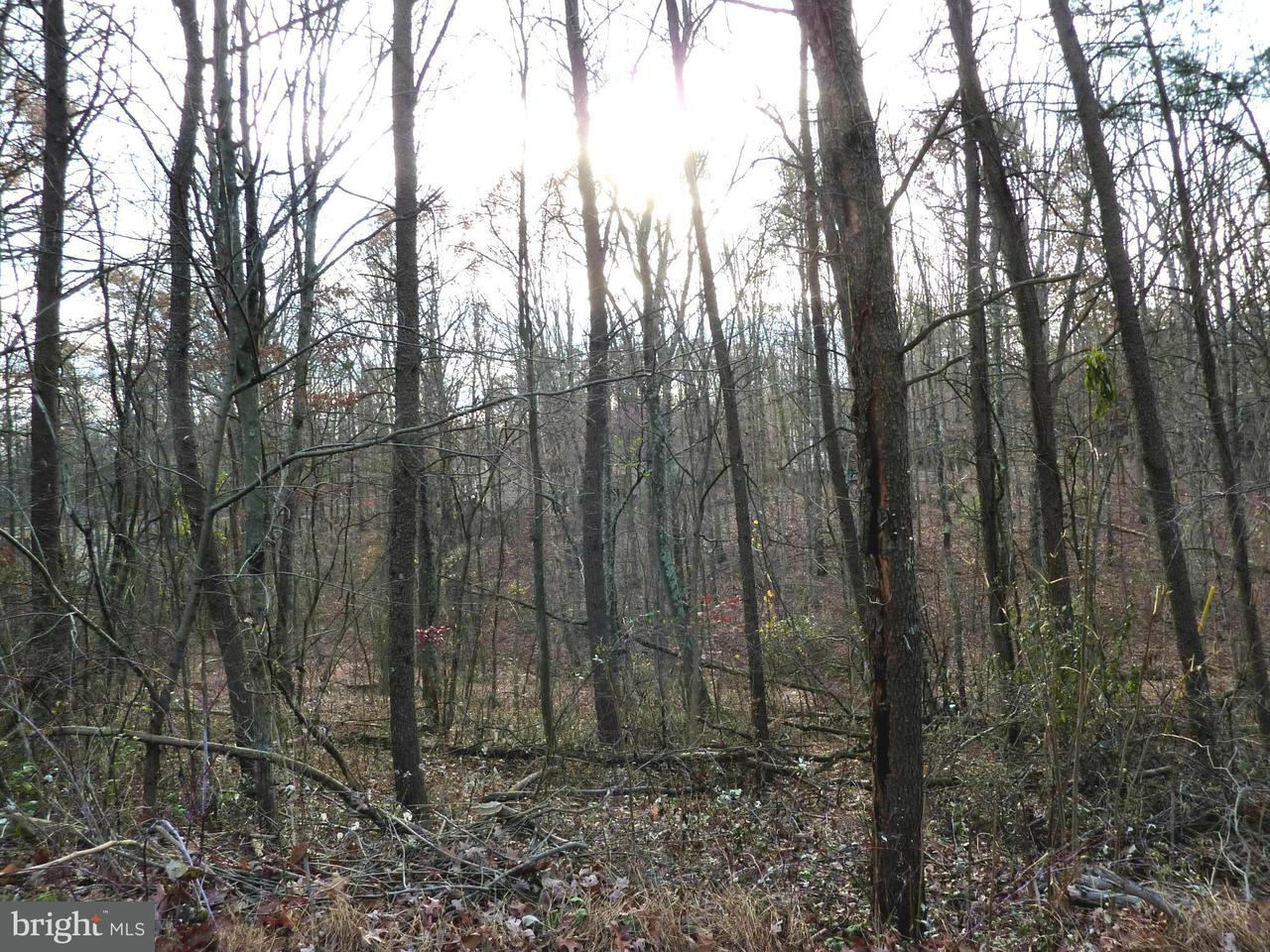 Additional photo for property listing at 102 Lakeside Ct  Cross Junction, Virginia 22625 United States