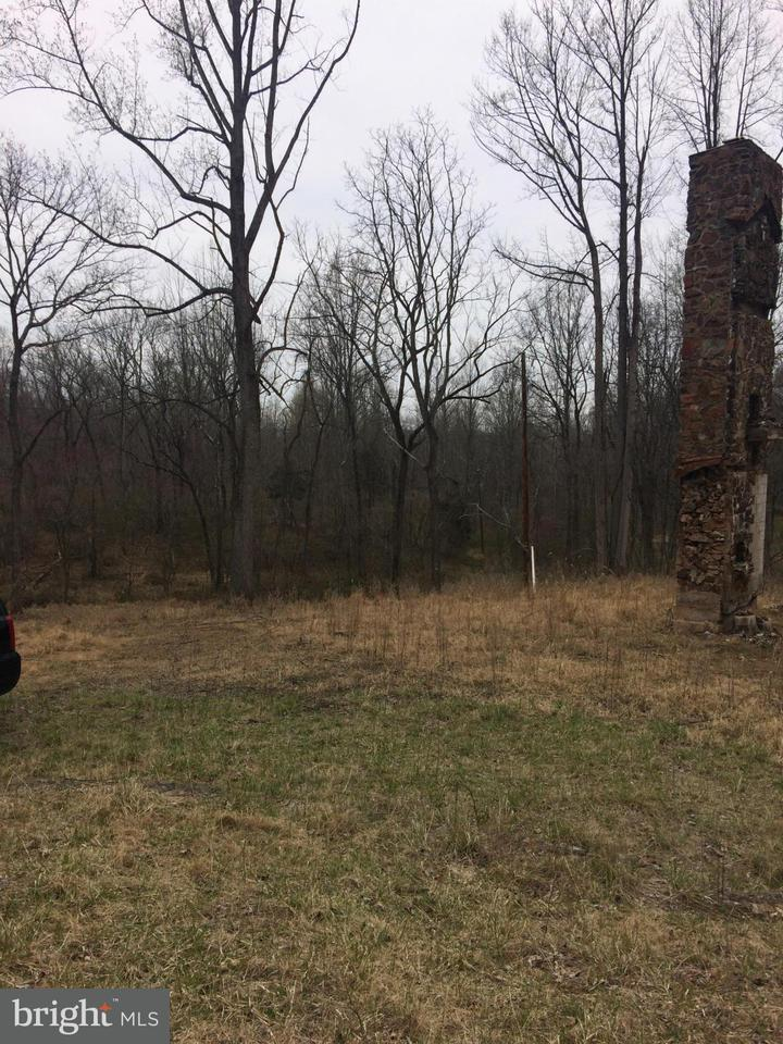 Land for Sale at Bust Head Rd The Plains, Virginia 20198 United States