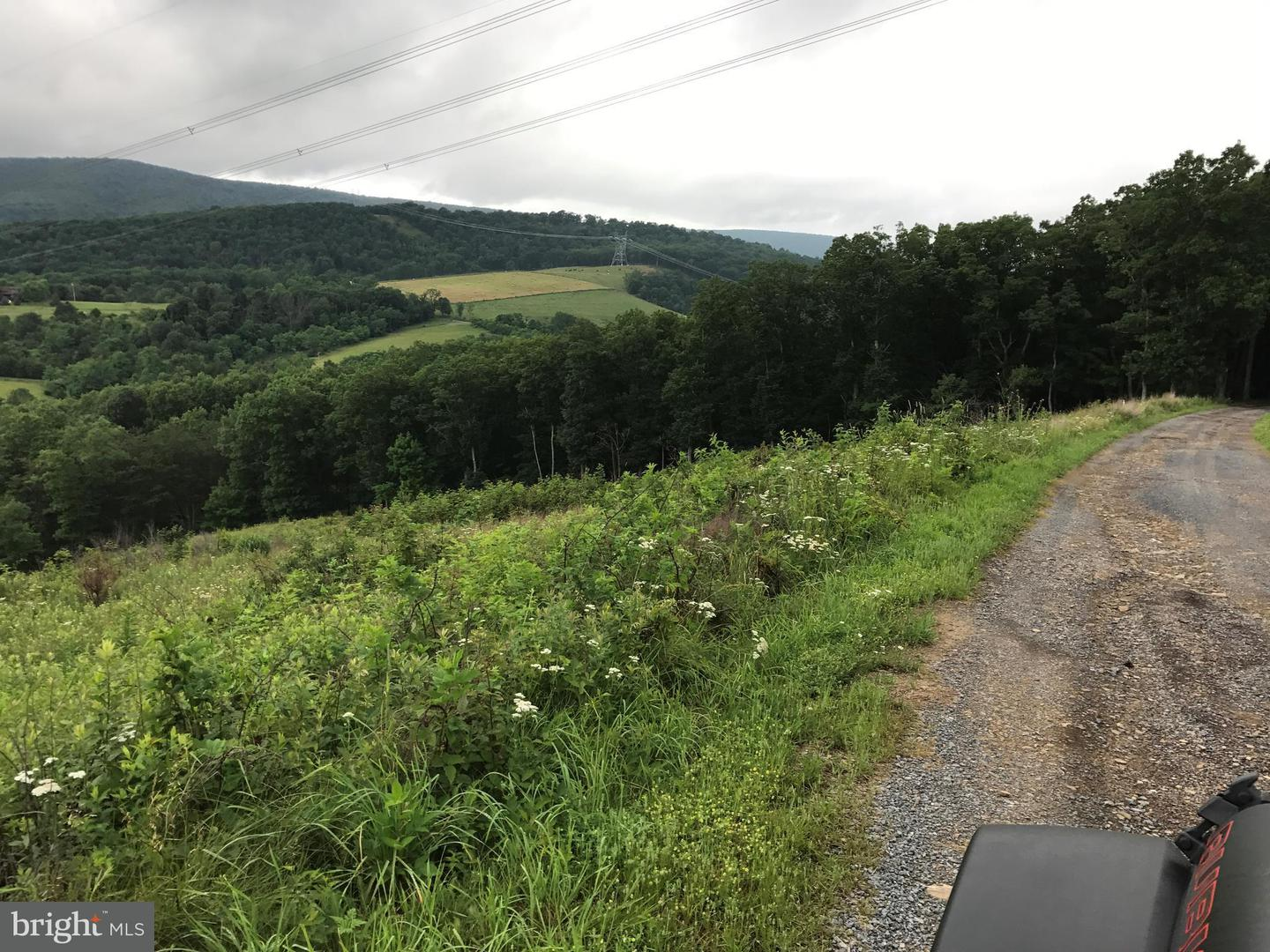 Land for Sale at Shade Valley Rd. Rio, West Virginia 26755 United States