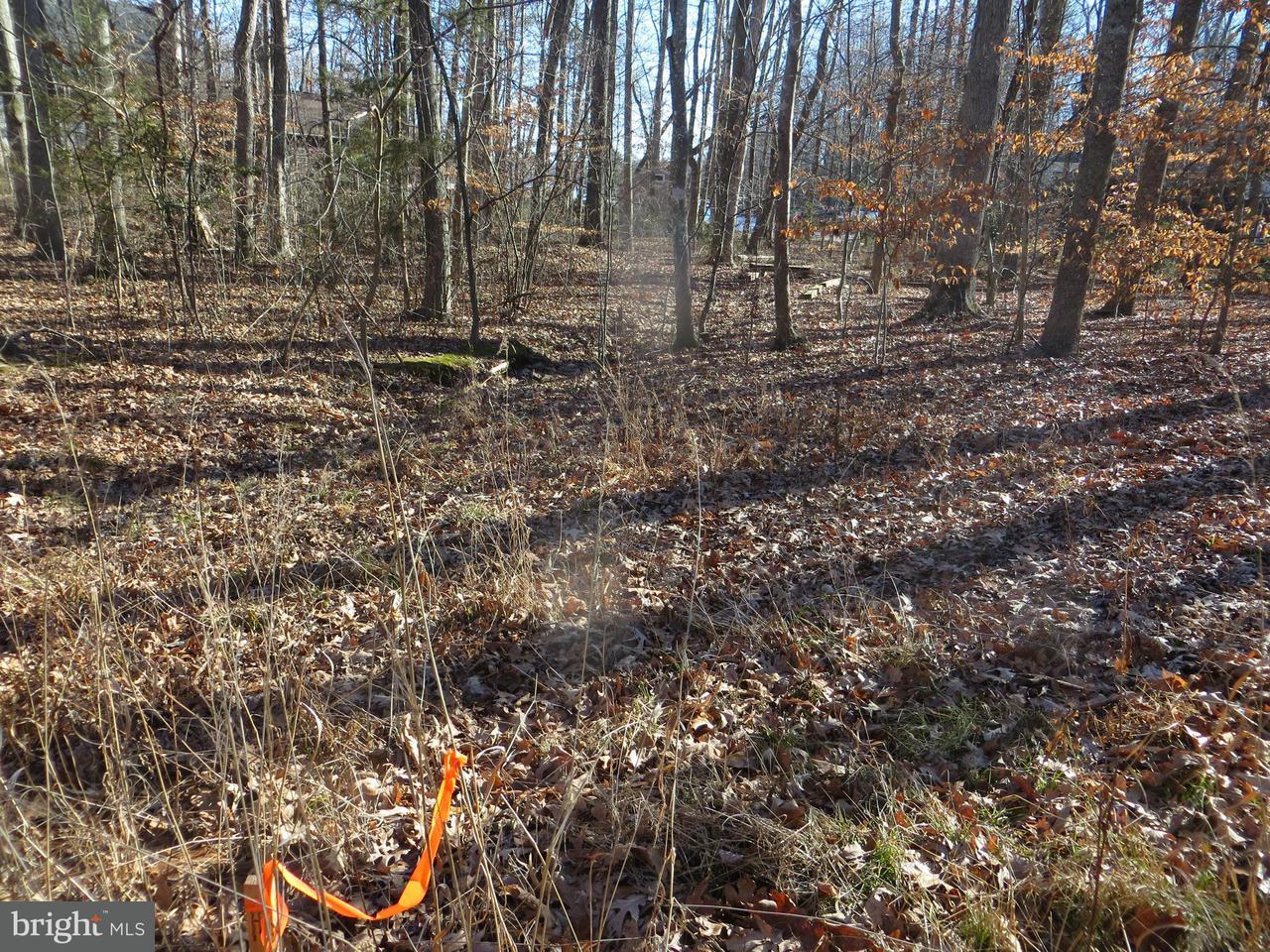 Additional photo for property listing at 122 Washington St  Locust Grove, Virginia 22508 United States