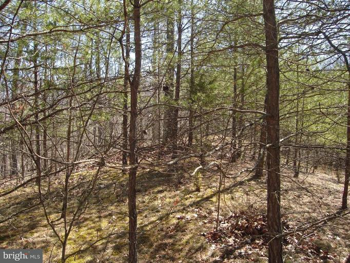Land for Sale at Boy Scout Rd Hedgesville, West Virginia 25427 United States
