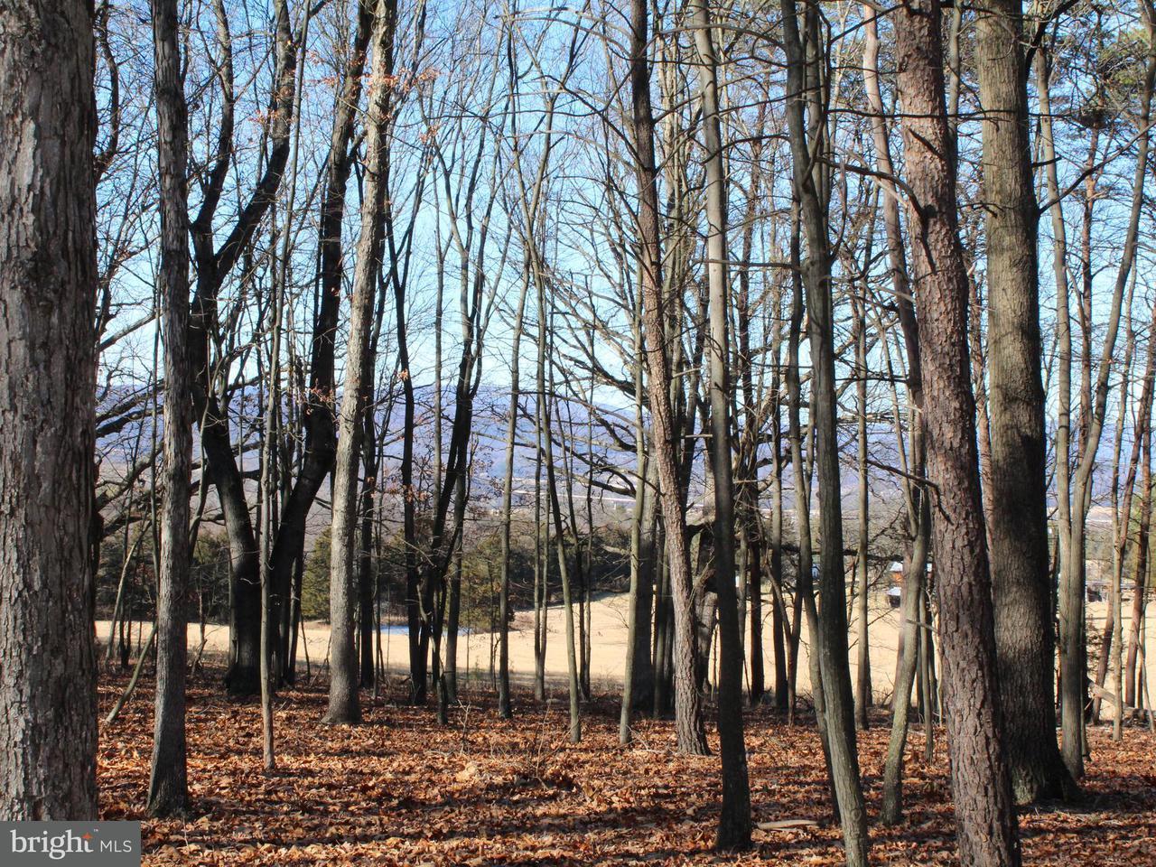 토지 용 매매 에 Drive Lane Drive Lane Moorefield, 웨스트버지니아 26836 미국