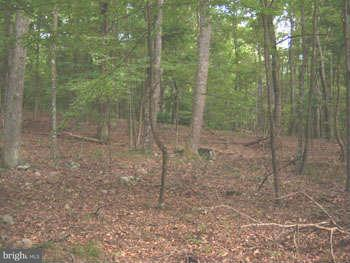 Additional photo for property listing at 18 Polish Lane  Great Cacapon, West Virginia 25422 United States