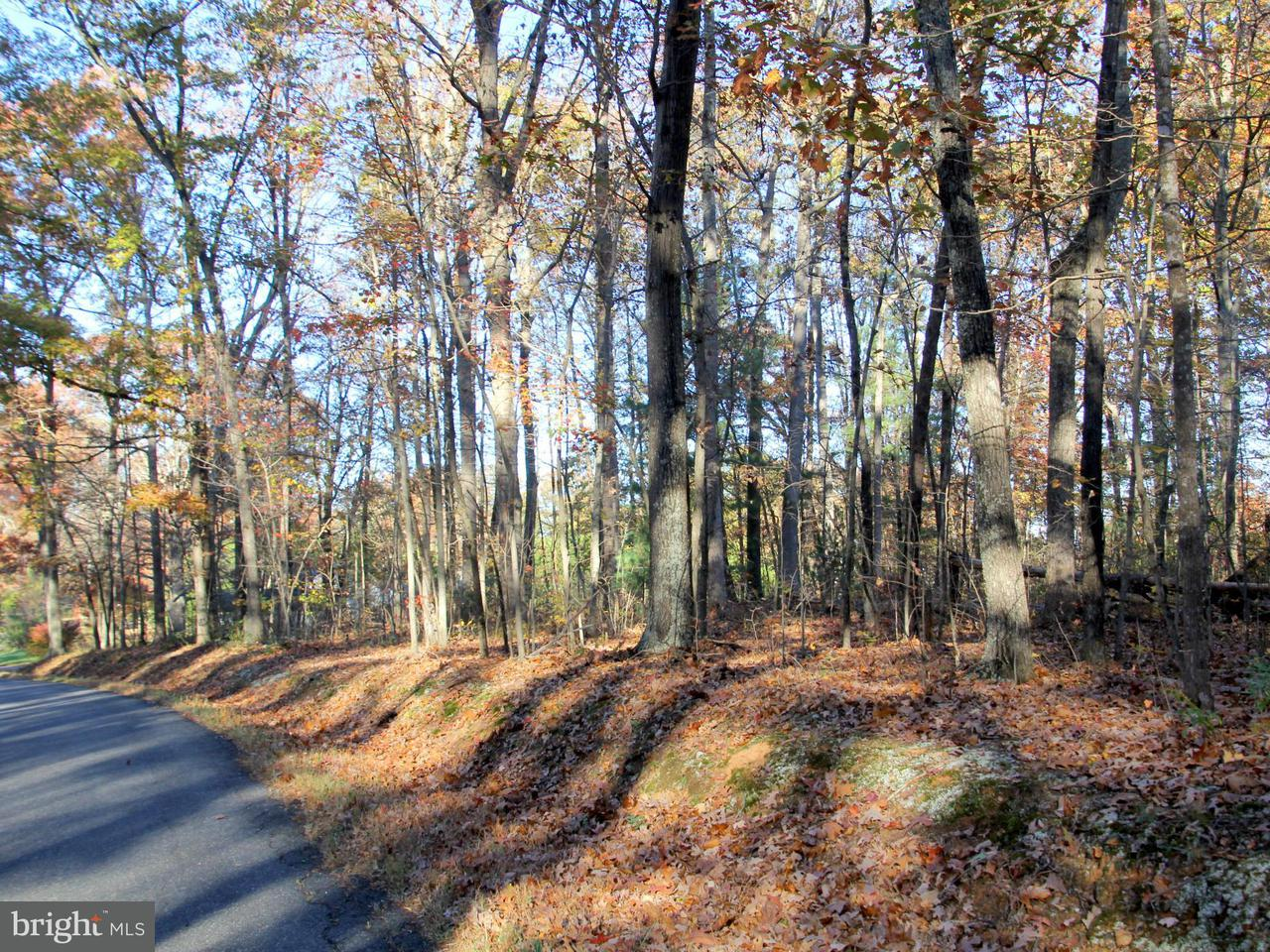 Photo of home for sale at Ridgeview Road, Brightwood VA