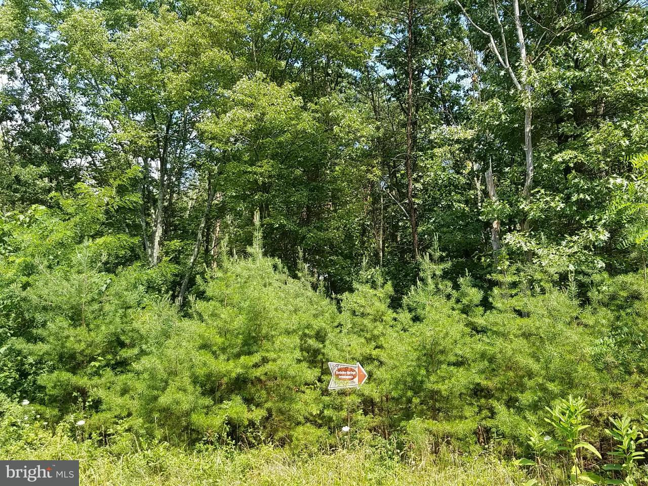 Land for Sale at 9 Silage Ln Berkeley Springs, West Virginia 25411 United States