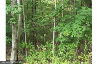 Land for Sale at Hemlock St Basye, Virginia 22810 United States