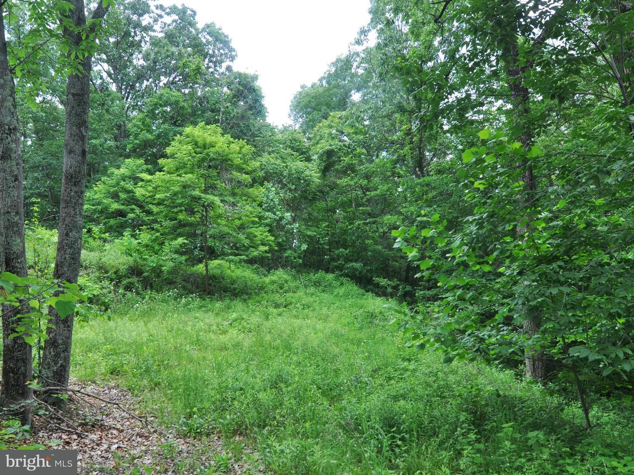 Additional photo for property listing at 158 Country Club Dr  Cross Junction, Virginia 22625 United States