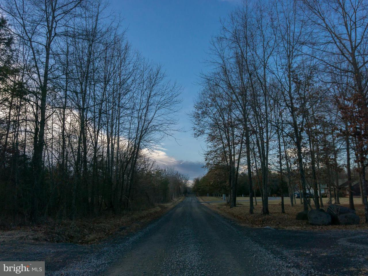 Land for Sale at Somerville Rd Mitchells, Virginia 22729 United States