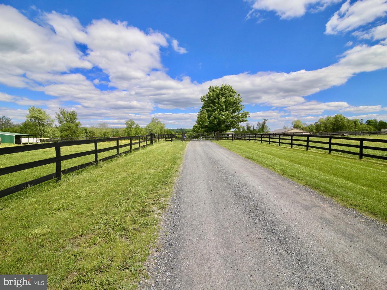 Terreno por un Venta en 22064a Sam Fred Road 22064a Sam Fred Road Middleburg, Virginia 20117 Estados Unidos