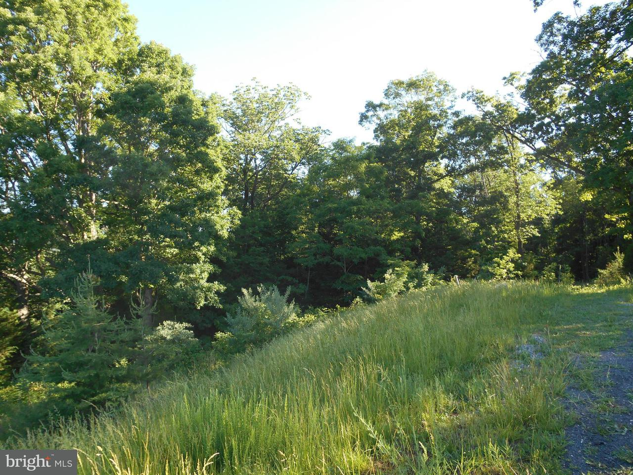 Additional photo for property listing at Lot 34 Savanna Dr  Strasburg, Virginia 22657 United States