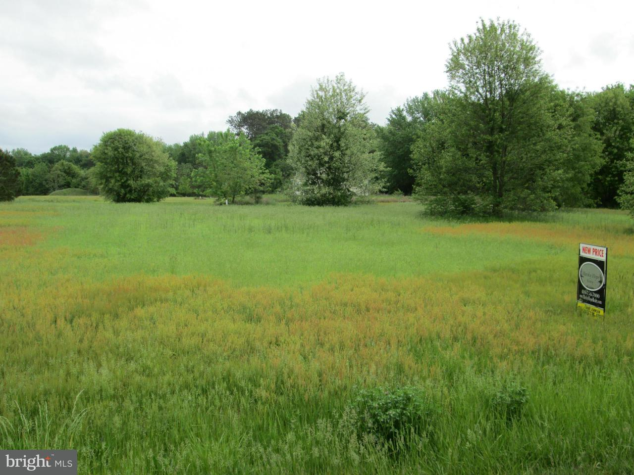 Land for Sale at Houston Branch Rd Federalsburg, Maryland 21632 United States