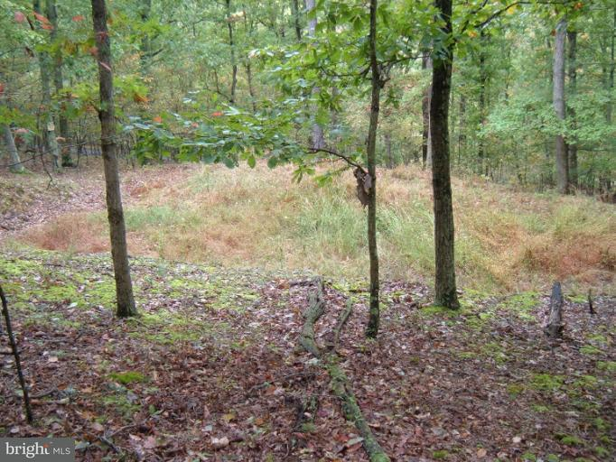 Additional photo for property listing at Town Creek Rd SE  Oldtown, Maryland 21555 United States