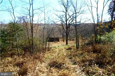 Land for Sale at Rt 10/7 Romney, West Virginia 26757 United States