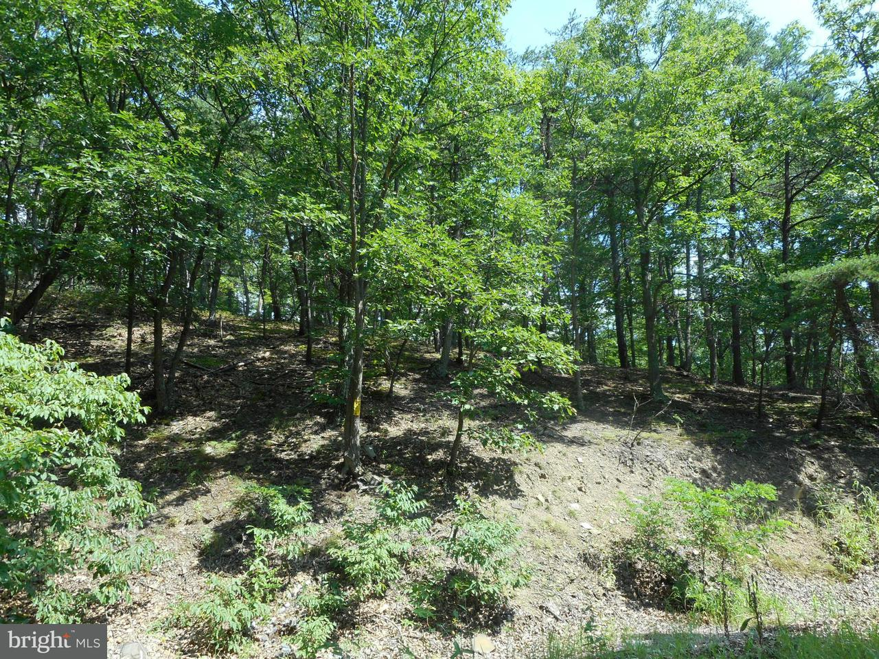 Additional photo for property listing at Off Rt 28 /pPssin wWnd hH  Springfield, West Virginia 26763 United States