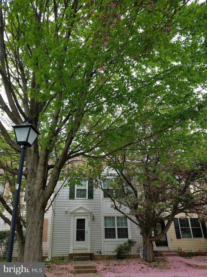 Other Residential for Rent at 10632 Chisholm Landing Ter North Potomac, Maryland 20878 United States