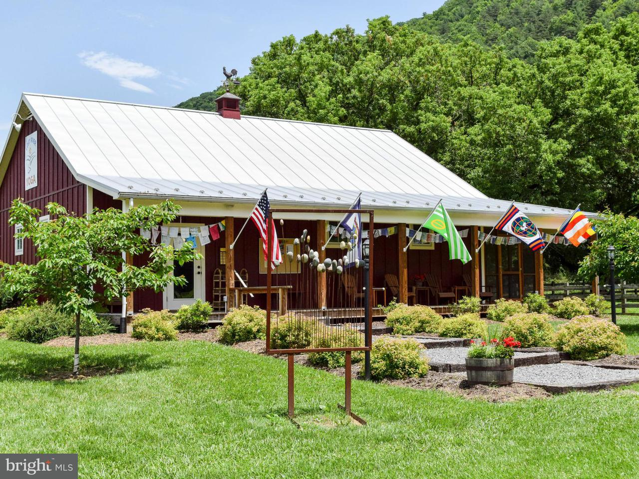 Commercial for Sale at 6979 Sr259 Hwy Lost River, West Virginia 26810 United States
