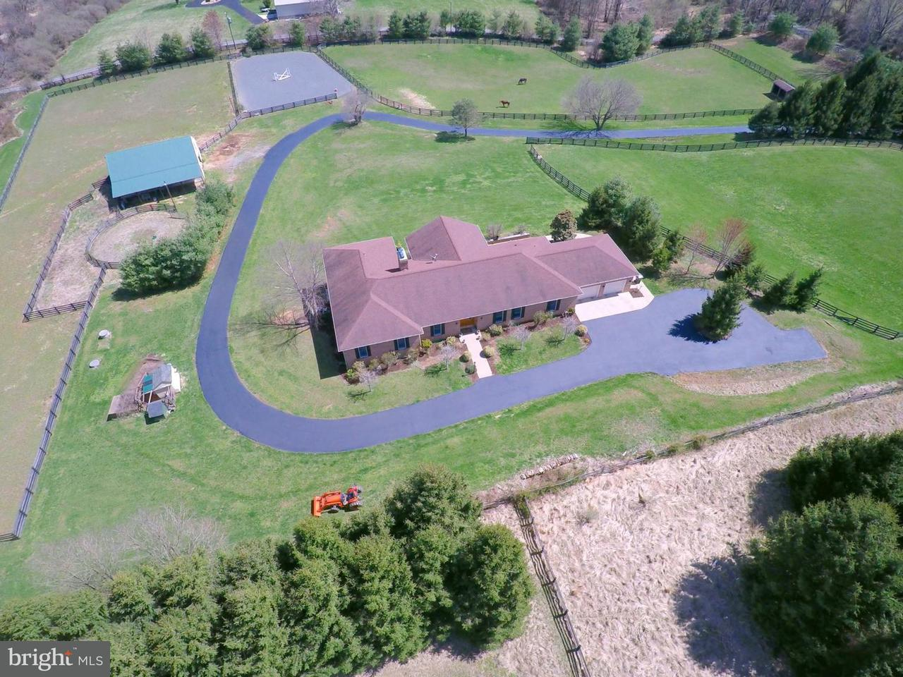 Farm for Sale at 39520 Charles Town Pike 39520 Charles Town Pike Hamilton, Virginia 20158 United States