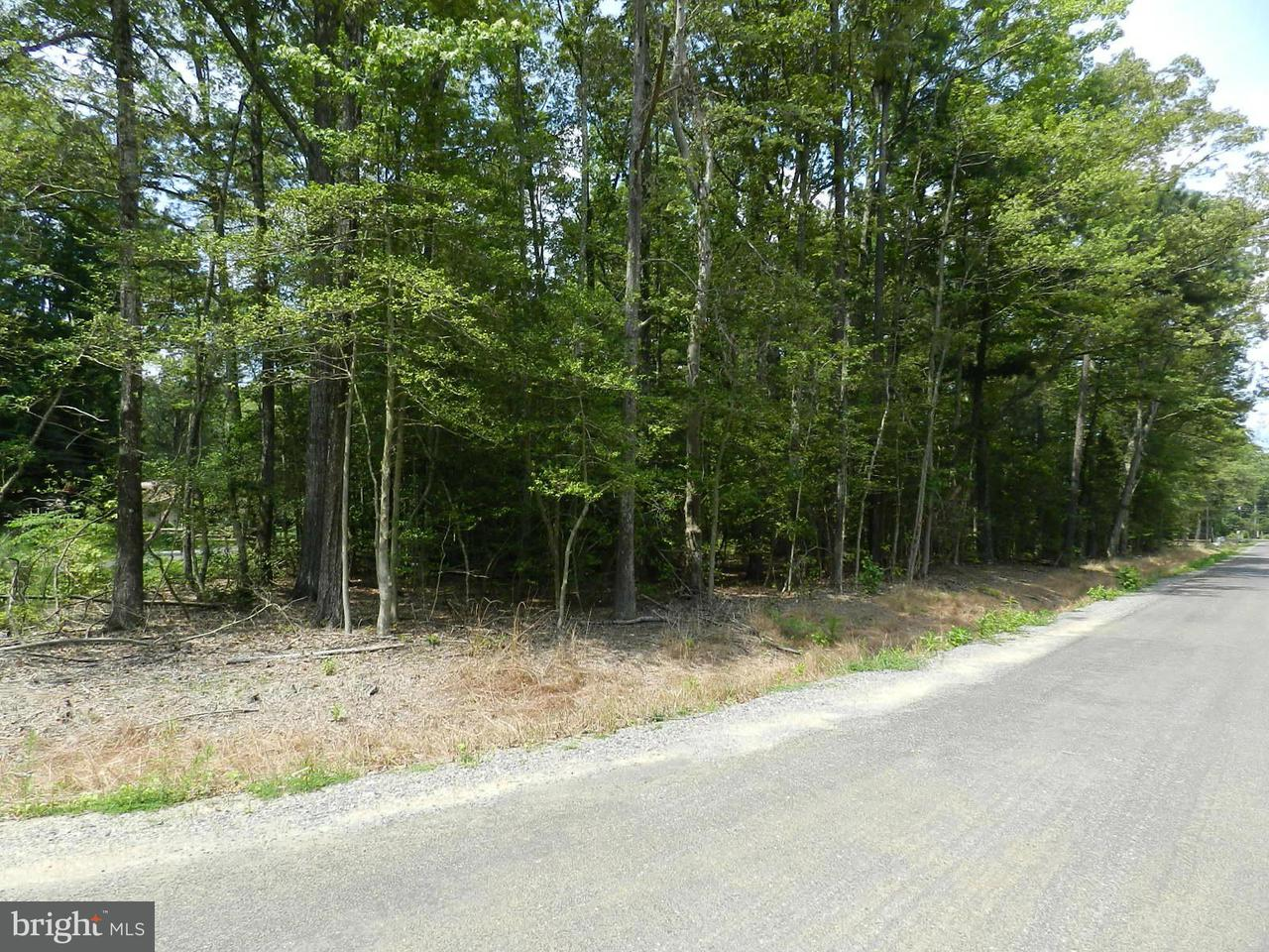 Additional photo for property listing at Placid Point  Colonial Beach, Virginia 22443 United States