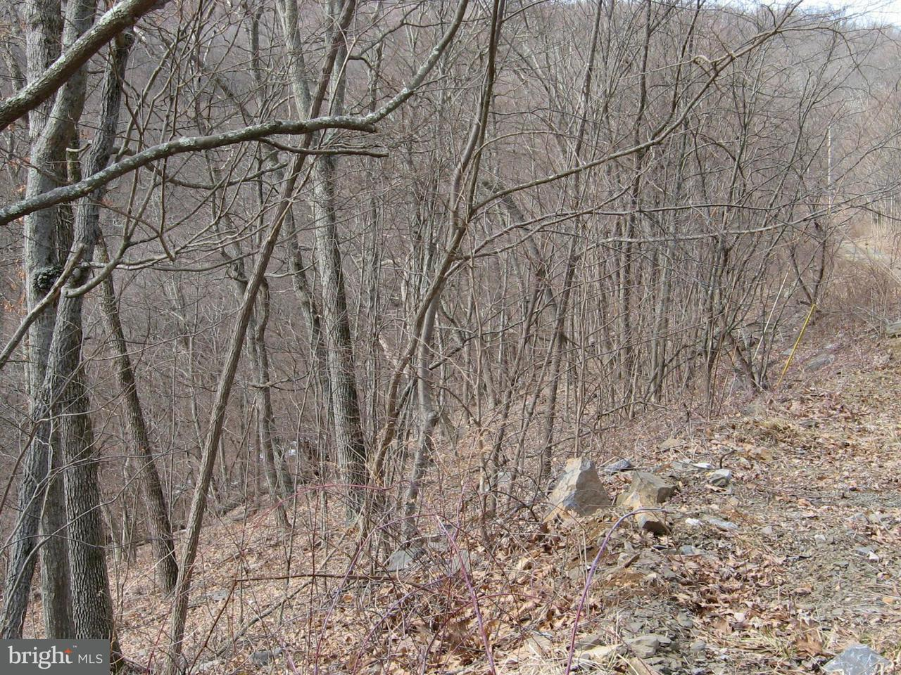 Additional photo for property listing at Highland Springs Rd.  Old Fields, West Virginia 26845 United States