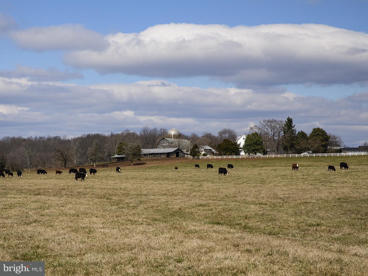 Land for Sale at 17019 Auburn Road 17019 Auburn Road Culpeper, Virginia 22701 United States
