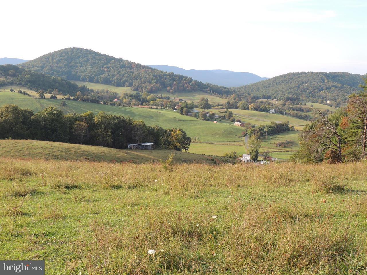 Land for Sale at Gooney Manor Loop Bentonville, Virginia 22610 United States