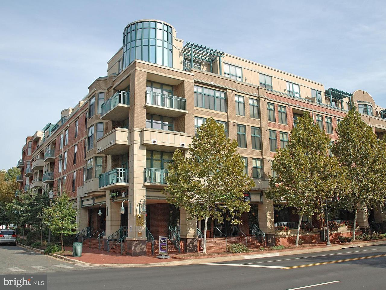 Appartement en copropriété pour l Vente à 502 W Broad St #513 502 W Broad St #513 Falls Church, Virginia 22046 États-Unis